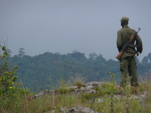 My guide Moses overlooking the forest on Mount Elgon.
