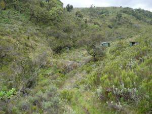 Corrugated iron sheet huts at camp 2.