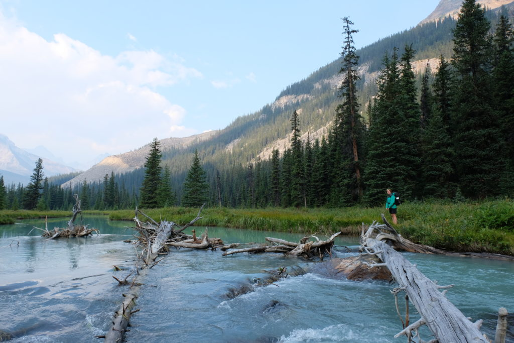 Walking down from the Tonquin Valley Trail